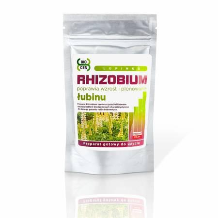 Rhizobium Łubinu (Rhizobium Lupinus)  100 g